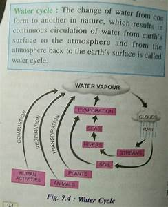 Explain Water Cycle With Diagram
