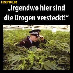 sprüche drogen drogen ich seh keine drogen cannabis gräser