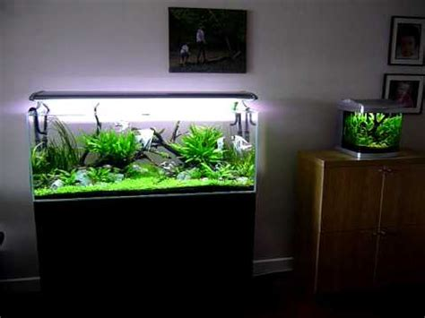 5 liter aquarium nature aquariums 240 litre and 25 litre