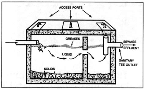 septic systems top tips  maintaining  healthy septic