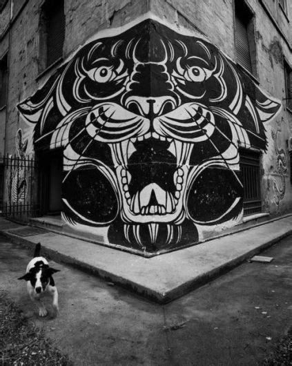 Lover & Scorpio | Art, Street art, 3d street art