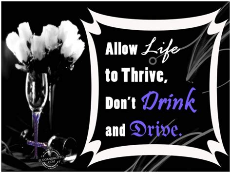 anti alcohol slogans