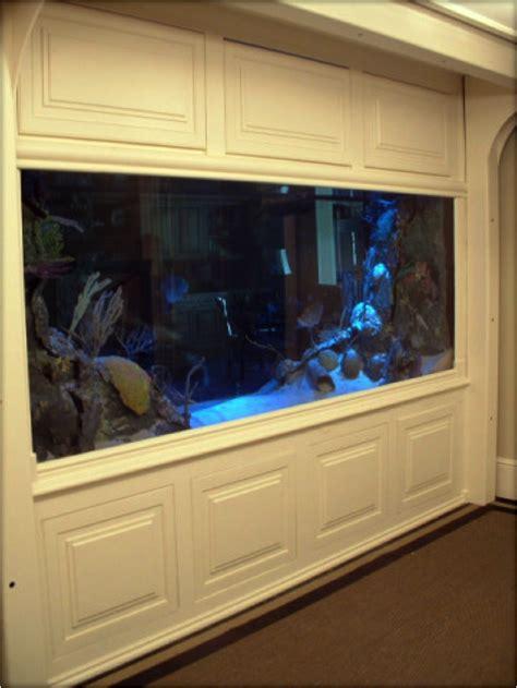 favorite room divider aquariums blue planet