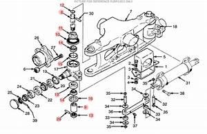 Hyster King Pin Kit  Ls5437