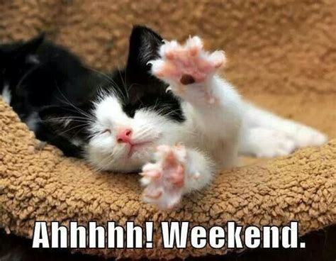 1000+ Images About Happy Friday On Pinterest Happy