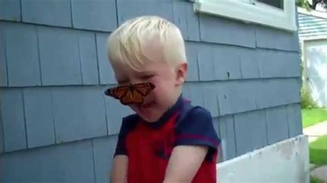 butterfly lands   boys face hd youtube