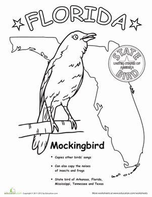 florida state bird worksheet education