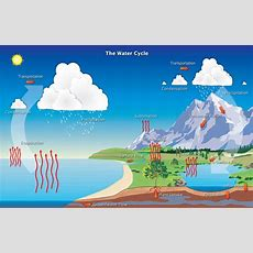 Hydrologic Cycle  Precipitation Education