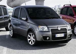Fiat Panda 2000 : 2006 fiat panda pictures cargurus ~ Medecine-chirurgie-esthetiques.com Avis de Voitures