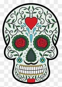 Tete De Mort Mexicaine Dessin : free clipart images luge dessin couleur free ~ Melissatoandfro.com Idées de Décoration