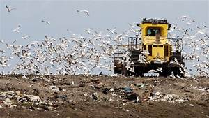 Huge rise in household recycling sent to landfill | News ...