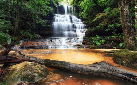 junction falls south lawson blue mountains australia