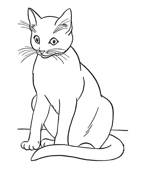 70 Animal Colouring Pages Free Download And Print Cat