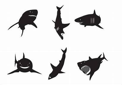 Shark Silhouette Vector Silhouettes Clipart Vectors Sharks