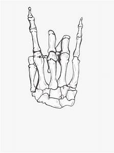 Skeleton Hand Drawing Step By Step