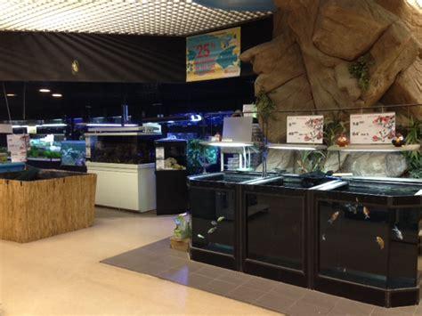 all marine all aquarium magasin poissons de qualit 233 dans le 77 93 page 4