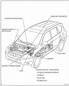 2001 Toyota Rav4 Parts Diagram