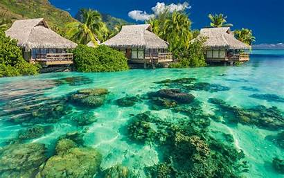 Island Beach Reef Landscape Coral Nature Lagoon