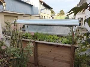 Tomaten Regenschutz Selber Bauen : garten und balkongarten einfache tipps aus der praxis ~ Frokenaadalensverden.com Haus und Dekorationen