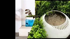Filter Für Aquarium : schwimmender mini garten dient als nat rlichen filter f r das aquarium youtube ~ Orissabook.com Haus und Dekorationen