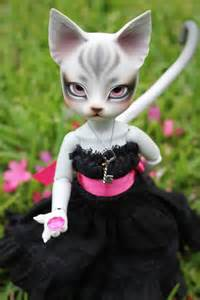 doll cat 17 best images about pipos dolls on doll