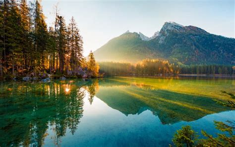 Rethinking Our Relationship With The Natural World | Think