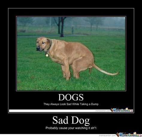 Sad Dog Meme - sad dog by theodore meme center