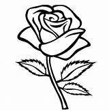 Coloring Rose Pages Roses Printable Sheets Flower Adults Teenagers Cute sketch template