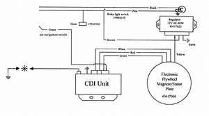 Procomp Electronics Distributor Wiring Diagram