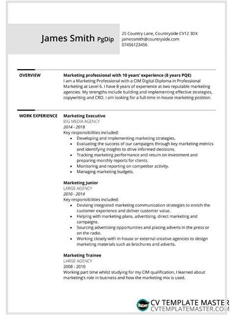 Work Cv Template by Two Page Bordered Free Cv Template Alternative Version