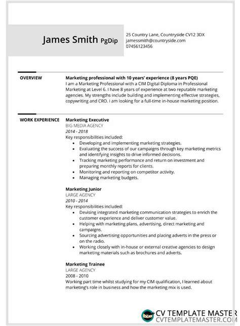 page bordered  cv template alternative version