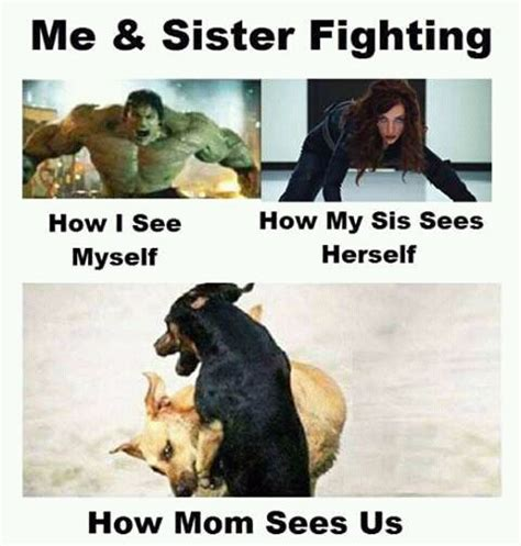 Siblings Fighting Meme - best 25 sibling humor ideas on pinterest siblings sibling memes and siblings funny