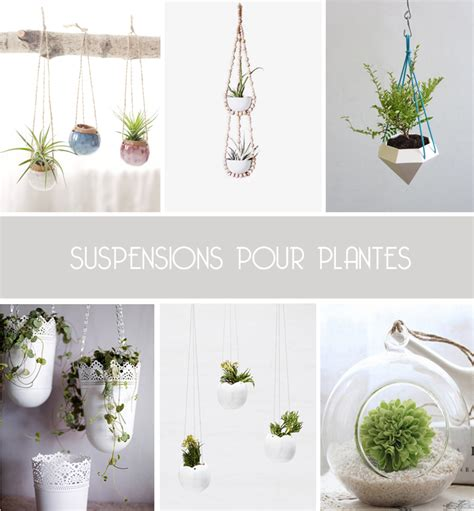 de jolies suspensions pour plantes inspire me pretty