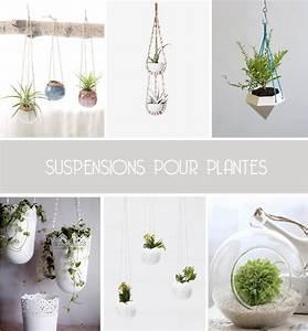 Suspension Pour Plante Interieur : de jolies suspensions pour plantes inspire me pretty ~ Teatrodelosmanantiales.com Idées de Décoration
