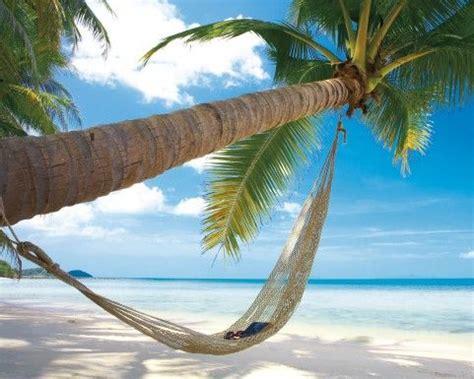 hamac si鑒e plages plage de rêves avec palmier et hamac reproductions acheter des posters sur le site de 1art1 belles îles affiche