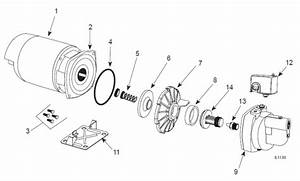 Wiring Diagram  30 Goulds Jet Pump Diagram