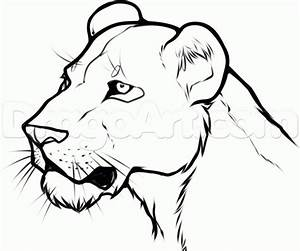 26 best lions images on Pinterest | Tattoo ideas, Female ...