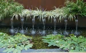 plante de bassin exterieur plantes vivaces gramin 233 es et arbres dans le jardin moderne