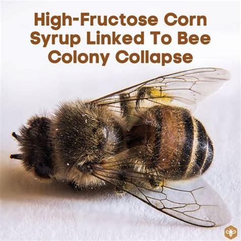 High Fructose Corn Syrup Addiction