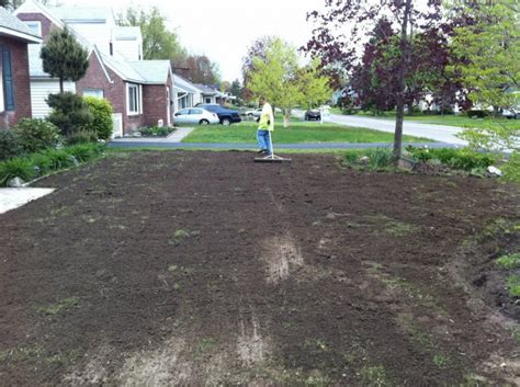 hydroseed or sod nvs landscape services serving albany delmar and the capital region sod and hydroseeding