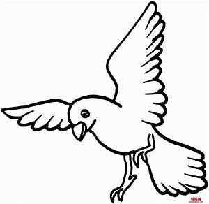 Simple Bird Outline Coloring Pages