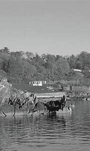 Moville Coastline Donegal bw Photograph by Eddie Barron