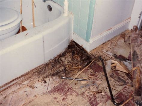 replace bathroom subfloor cost subfloor repair bathroom
