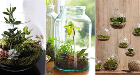 herbes de cuisine la tendance des mini jardins fait fureur depuis quelques