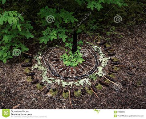 mandala im wald stockfoto bild