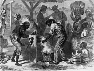 King Of Cotton : the role cotton played in the 1800s economy african ~ Nature-et-papiers.com Idées de Décoration