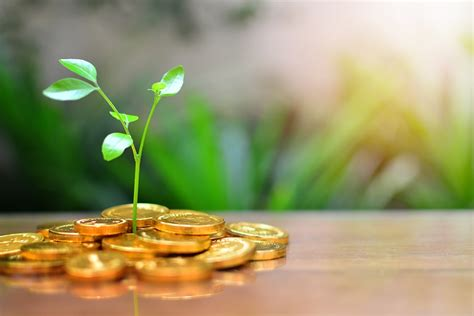 gold    part   investment portfolio