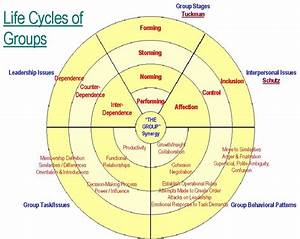Life Cycles Of Groups