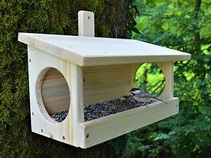 Futterhaus Für Vögel Selber Bauen : futterhaus bausatz basar bruno xxl v gel bastelset zum selber bauen ebay ~ Whattoseeinmadrid.com Haus und Dekorationen