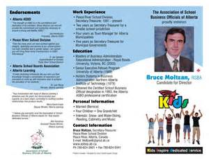 Political Campaign Brochure Examples